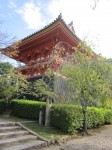 Sensory Awareness: Living Well in Challenging Times –  Kyoto, Japan: September 22, 2015
